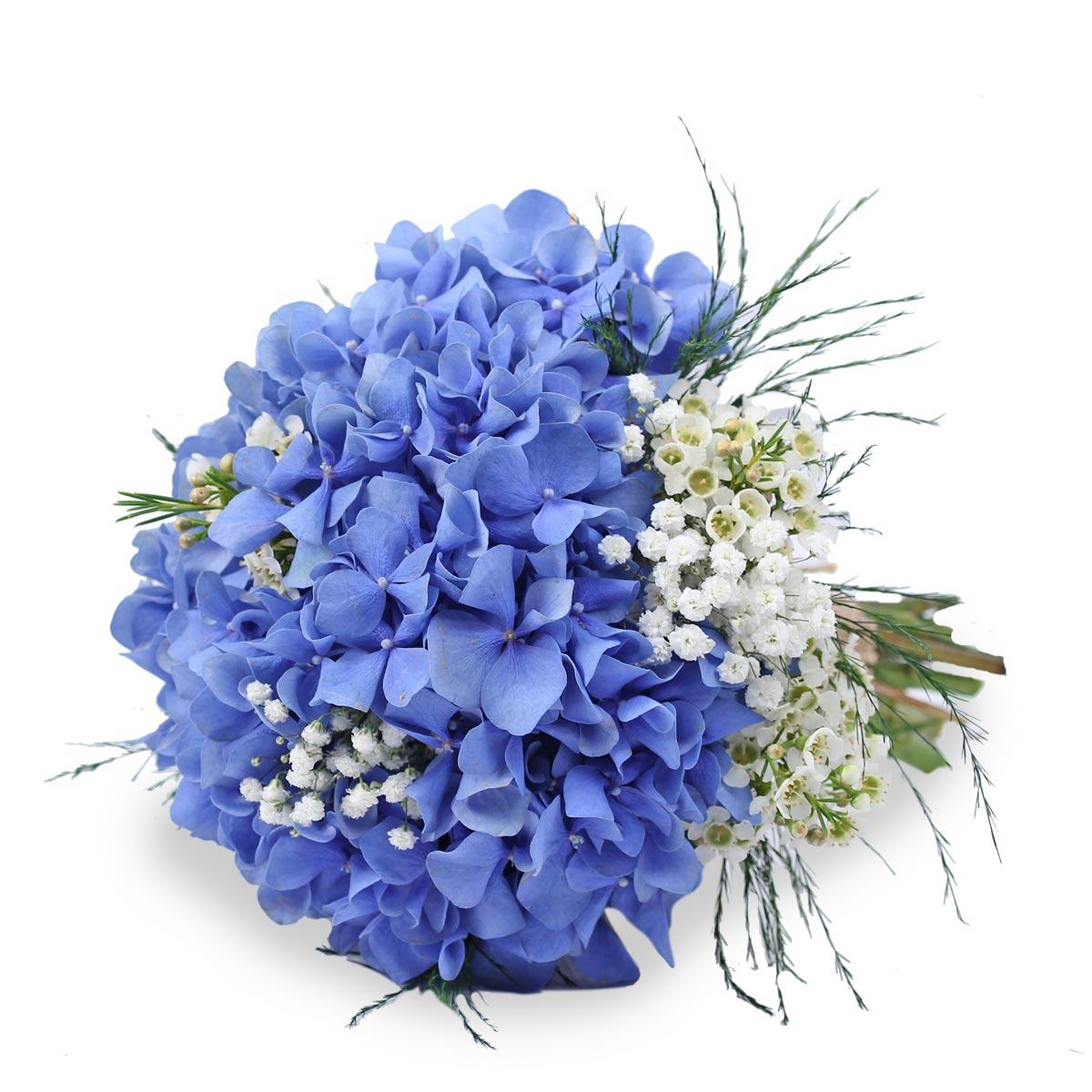WB1627 Hydrangea bridal Bouquet
