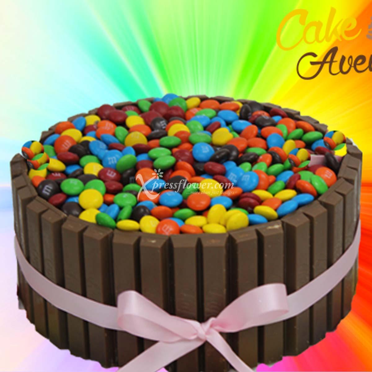CAC2117 Chocolate Overdose B