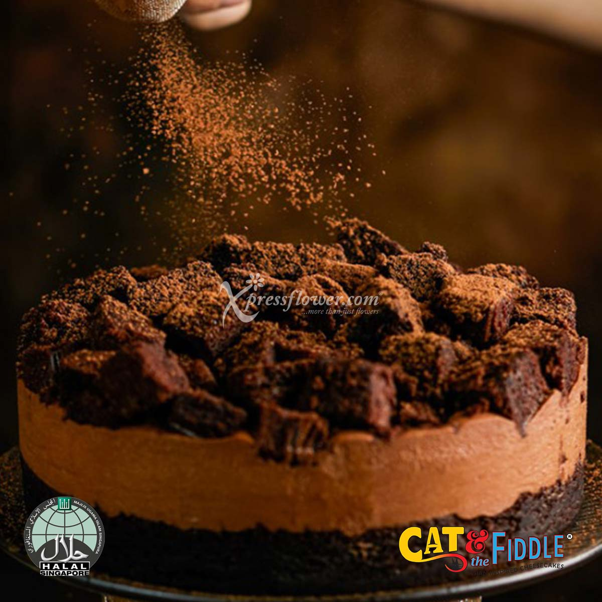 Naughty and Nice Devil's Chocolate Cheesecake (Cat & The Fiddle)