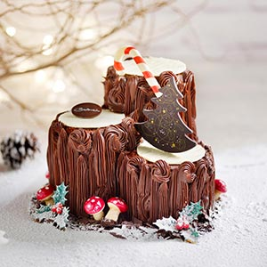 Triplette Chocolate Cake Log