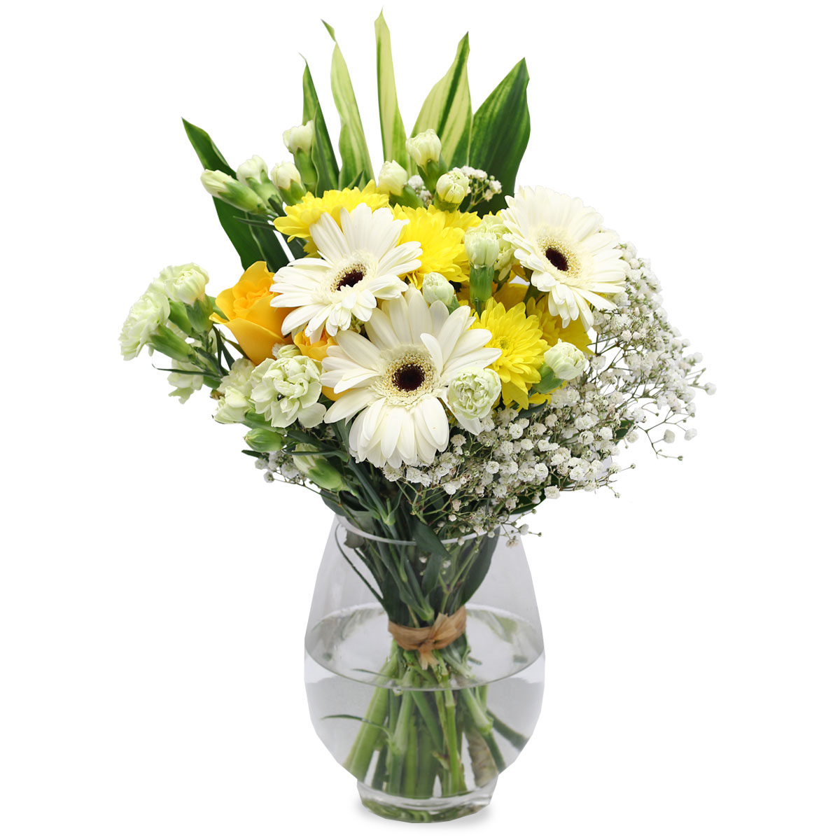 SCF1702 dearly departed white gerberas