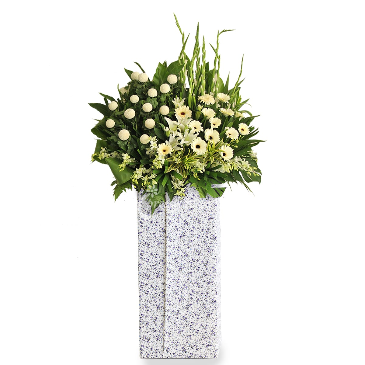 SC1705 Sullen Marvel White Ping Pong Gerbera Wreath Funeral & Condolence Flower Stands