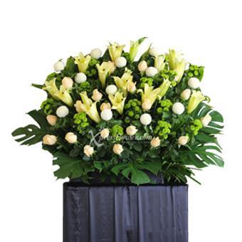 Gentle support (Wreath)