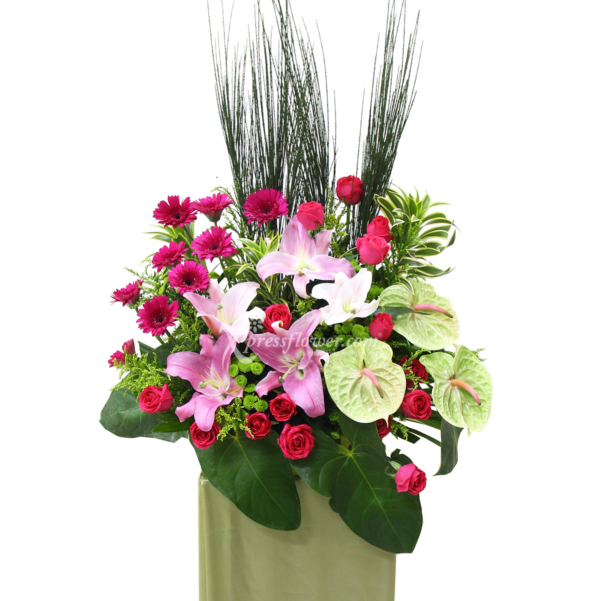 CS1440 Rhythmical Posies congratulatory flower opening stand