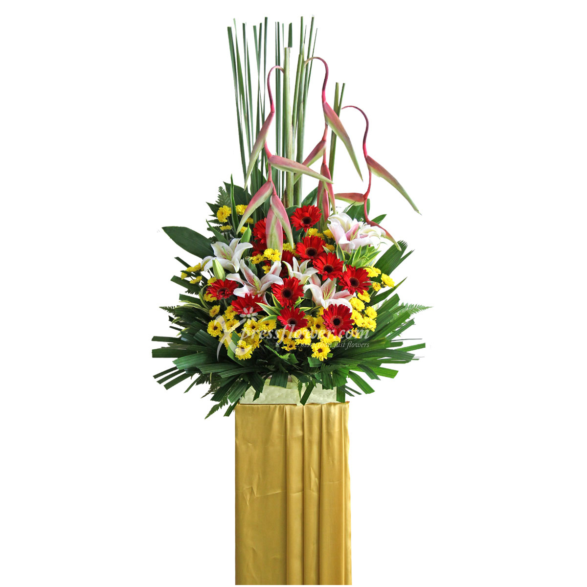 CS1705 Impressive Growth congratulatory flower opening stand