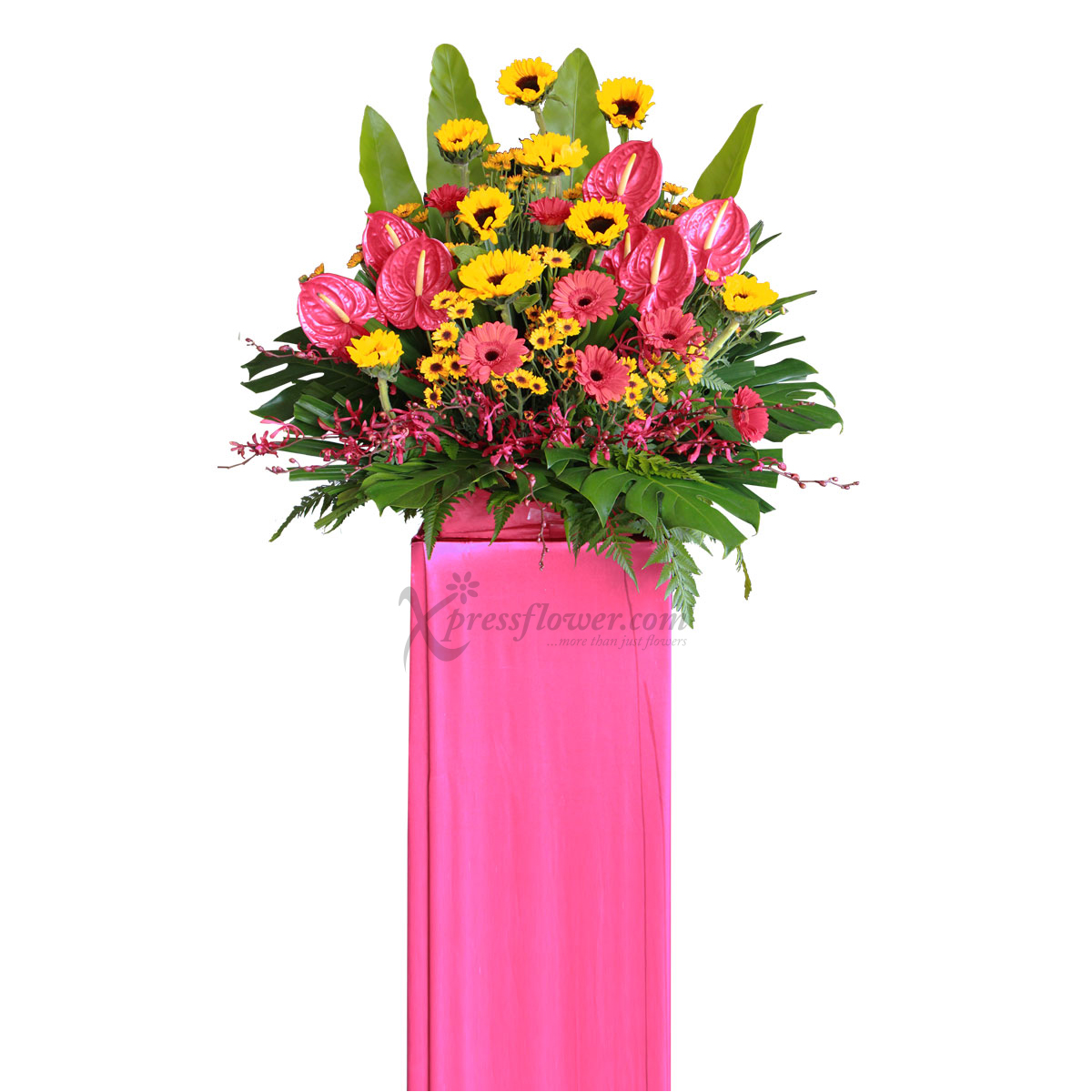 CS1713 Deserving Commendation congratulatory flower opening stand