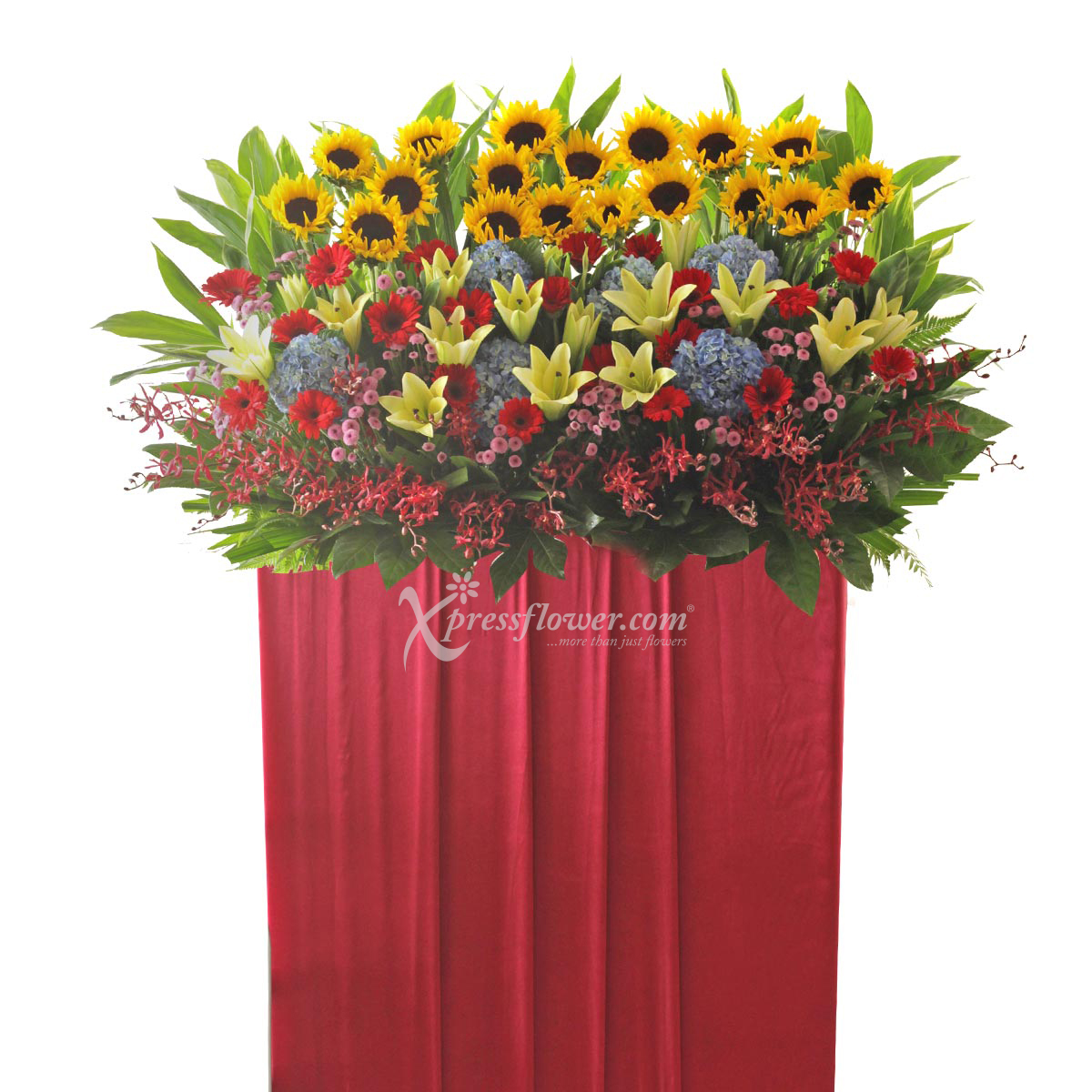 CS1714 Phenomenal Success congratulatory flower opening stand