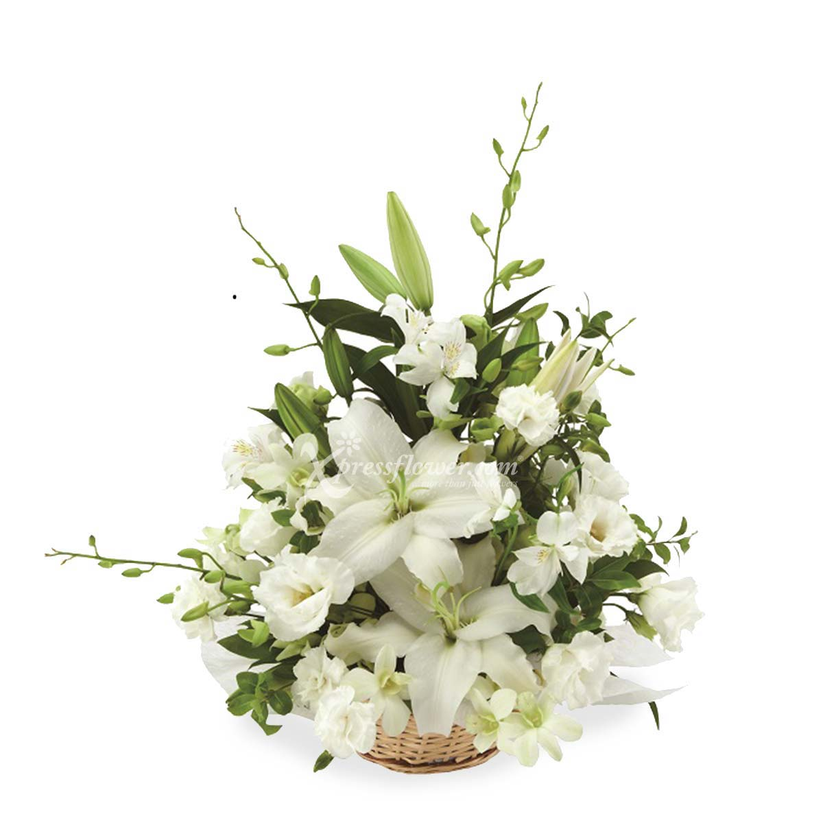 WHITE-THEMED SYMPATHY ARRANGEMENT (JP)