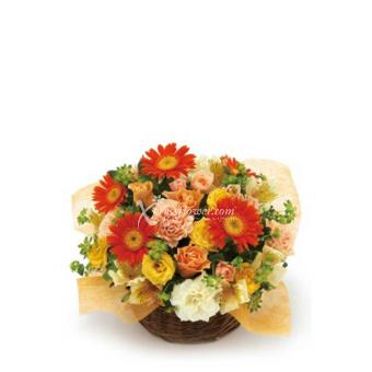 BRIGHT-THEMED ARRANGEMENT (JP)