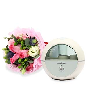 uMist Dream Air Humidifier