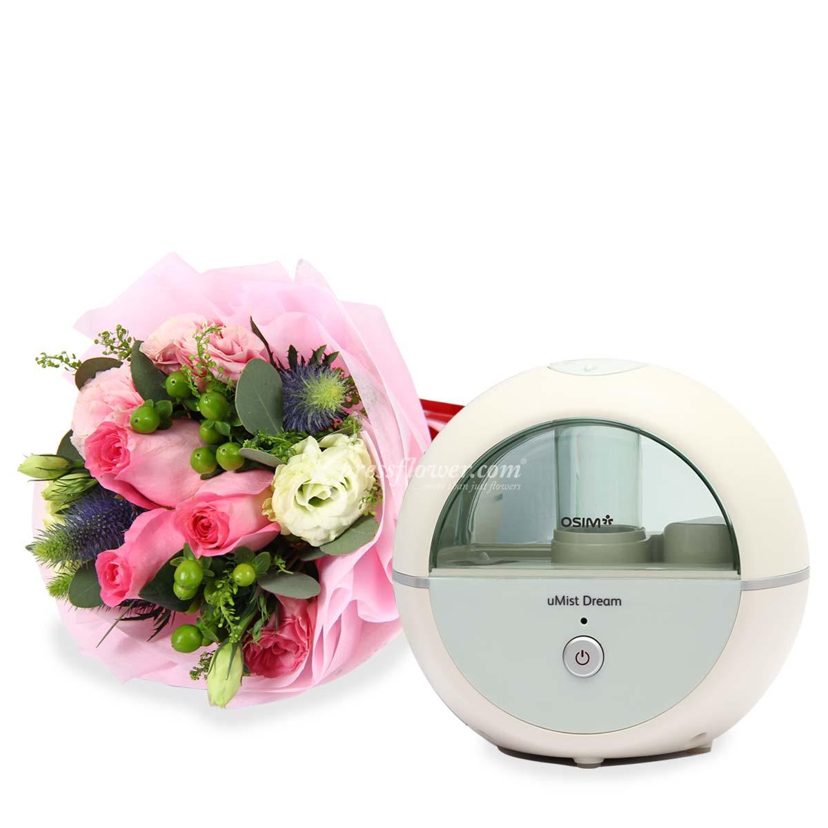 uMist Dream Air Humidifier