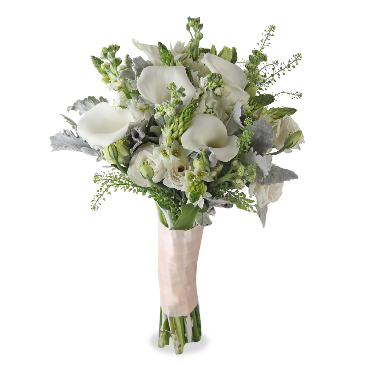 WB1607  All for Love Ornitogalum white calla lilies bridal bq