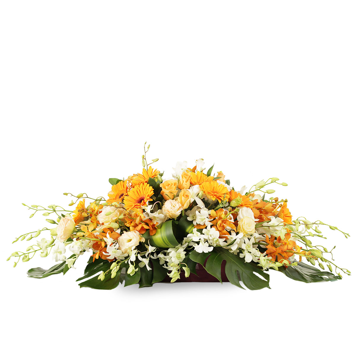 WD1701 glorious beginnings gold gerbera