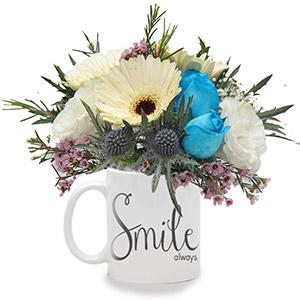 Delicate Smiles