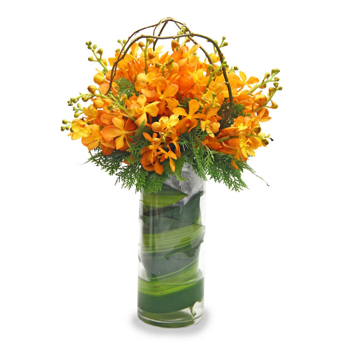 AR1420 Cheerful Autumn Orchid Arrangement