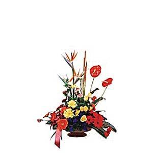 ARRANGEMENT OF CUT FLOWERS (IND)