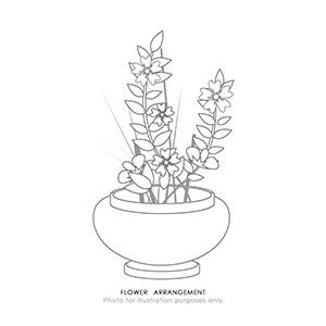 Arrangement of Cut Flowers (MY)