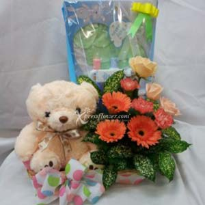 BABY HAMPER (MY)