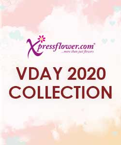 Valentine's Day 2020 Collection