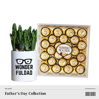 Wonderful Choco-dad (Cactus plant with 24 Ferrero Rocher chocolates)