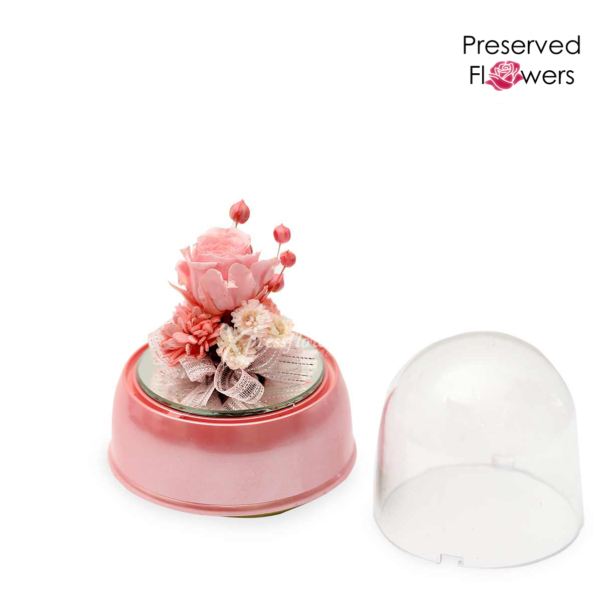 PR1907 Blushing Charms Preserved Flower