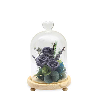 Love and Beyond (Preserved Flowers)