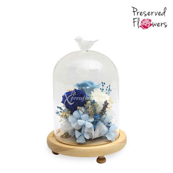 Frozen in Time (Preserved Flowers)