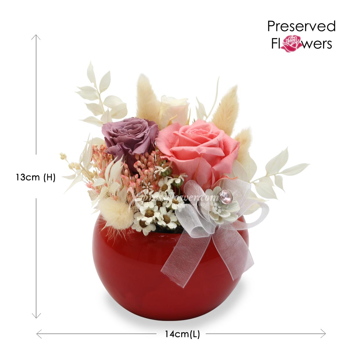 PR2022 Passion Blooms Preserved Flowers