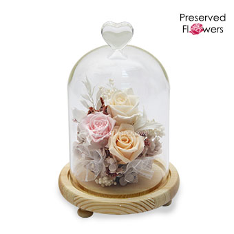 Pastel Kisses (Preserved Flowers)