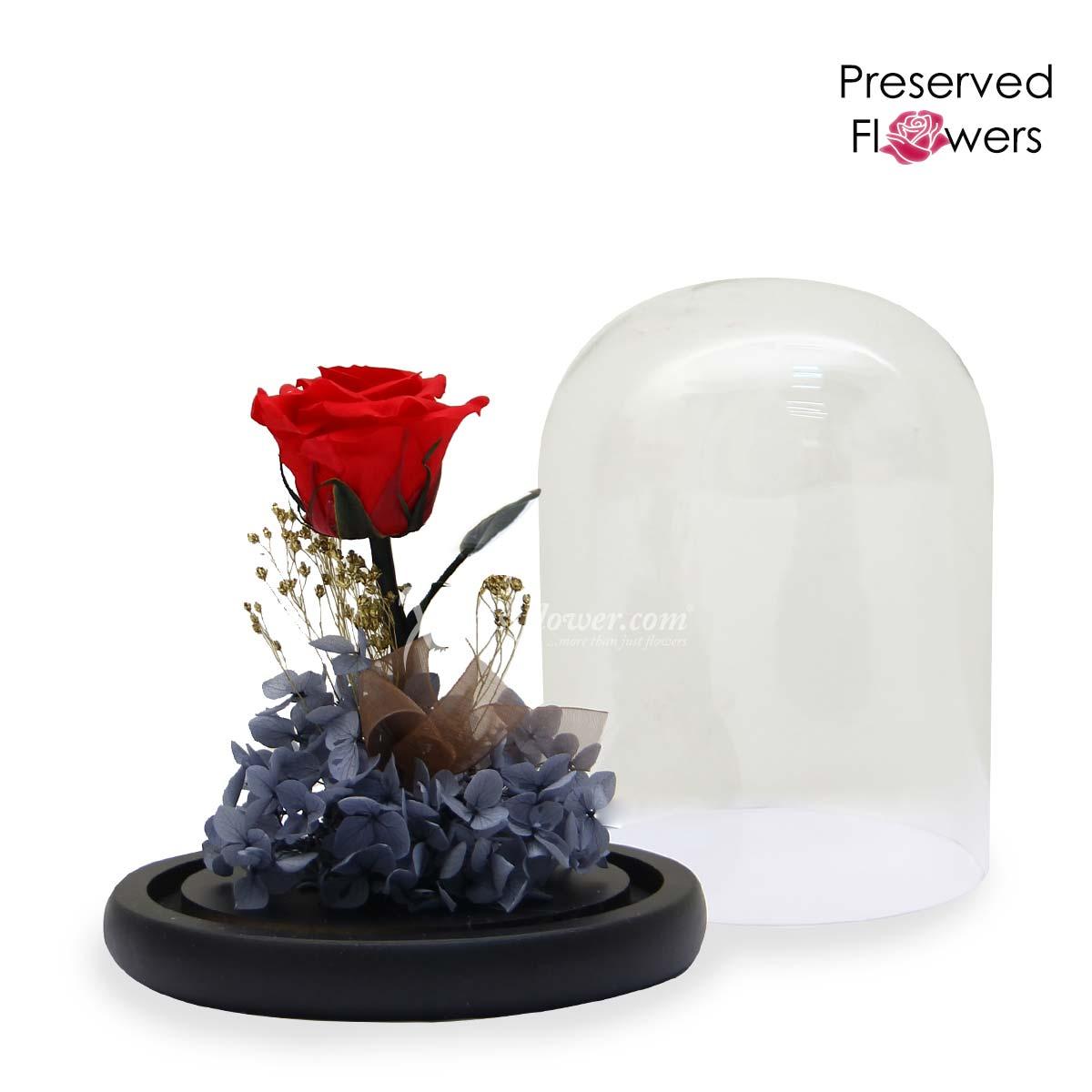 PR2106 Love at Midnight Preserved Flowers