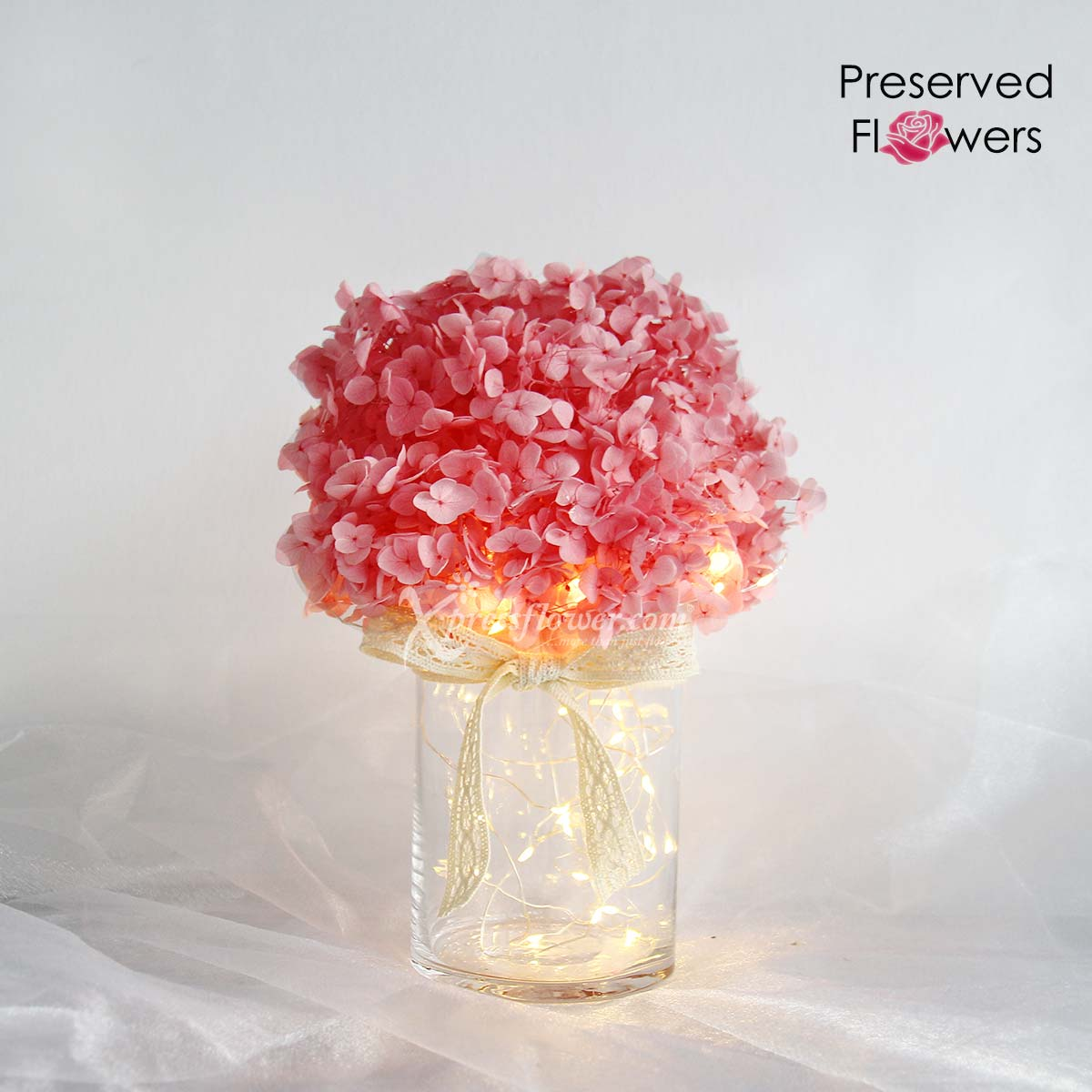 A Fluff of Blush (Preserved Pink Hydrangea with LED lights)
