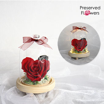 Roses In Love (Preserved Red Rose with LED lights)