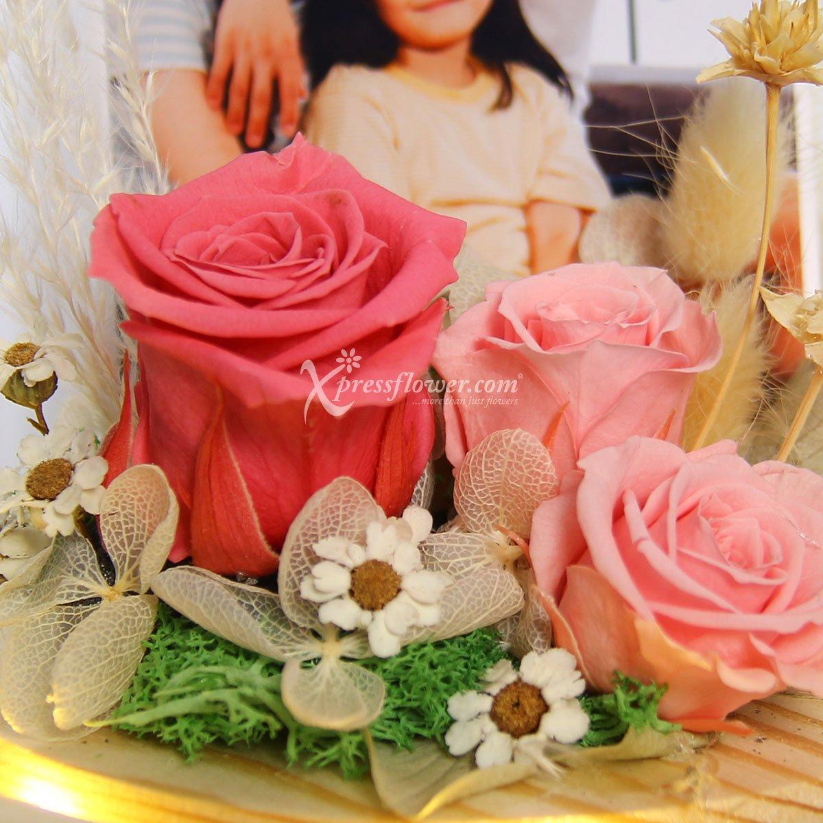 PR2123 Preserved Roses Photo Dome
