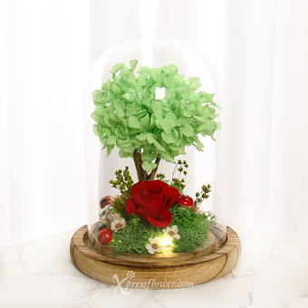 My Secret Garden (Preserved Flowers with LED lights)