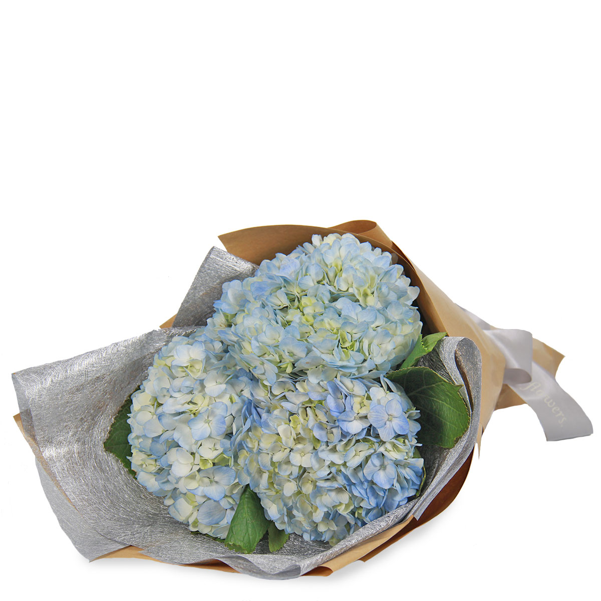 BQ1739 heavenly hydrangea light blue
