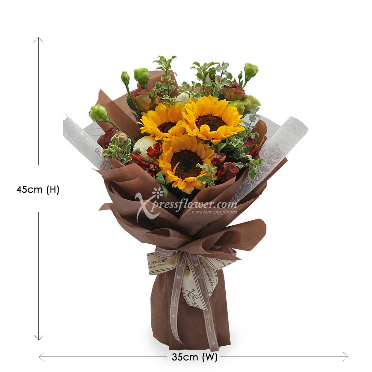BQ1927 You are the Sunflower