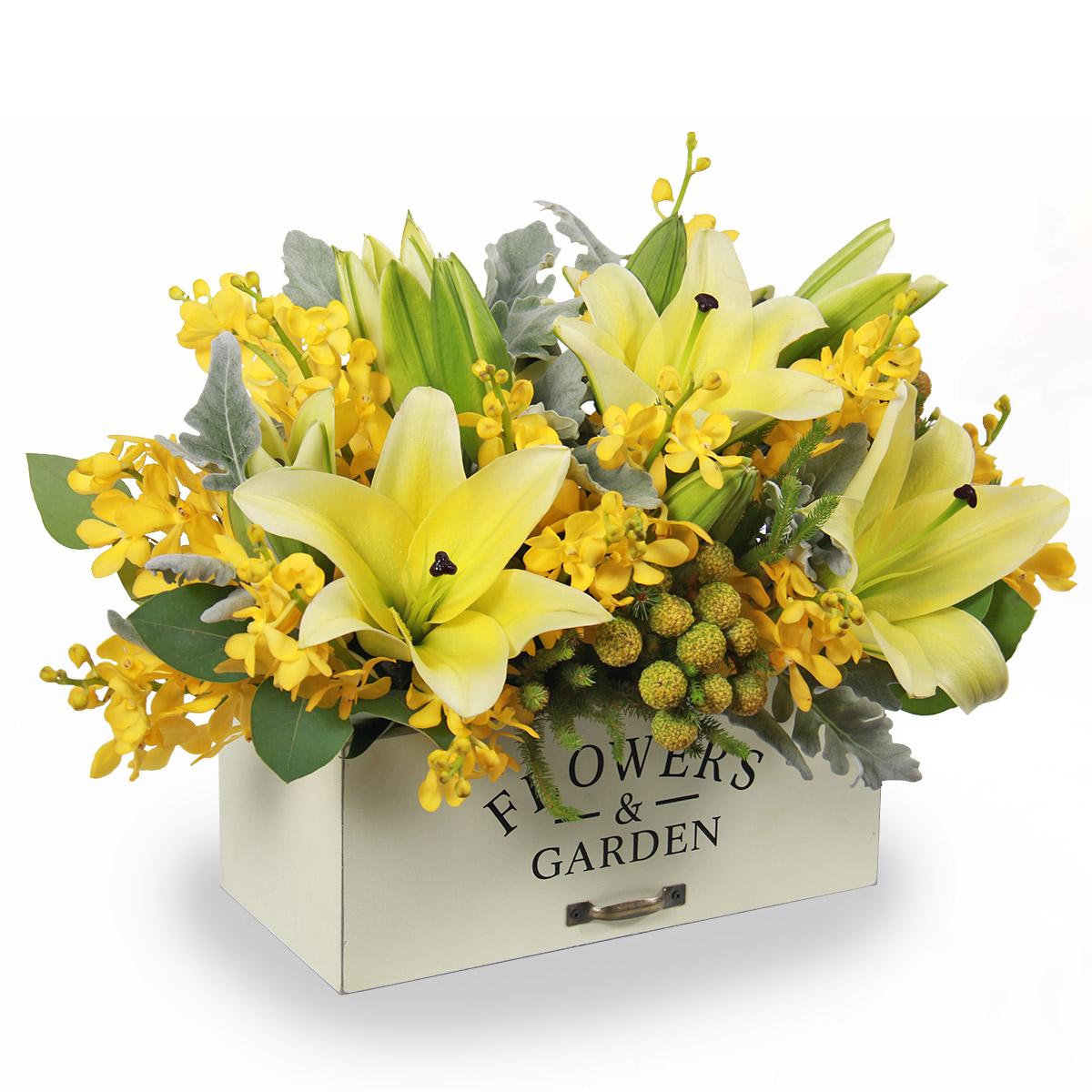 AR1712 stunning medley yellow lilies