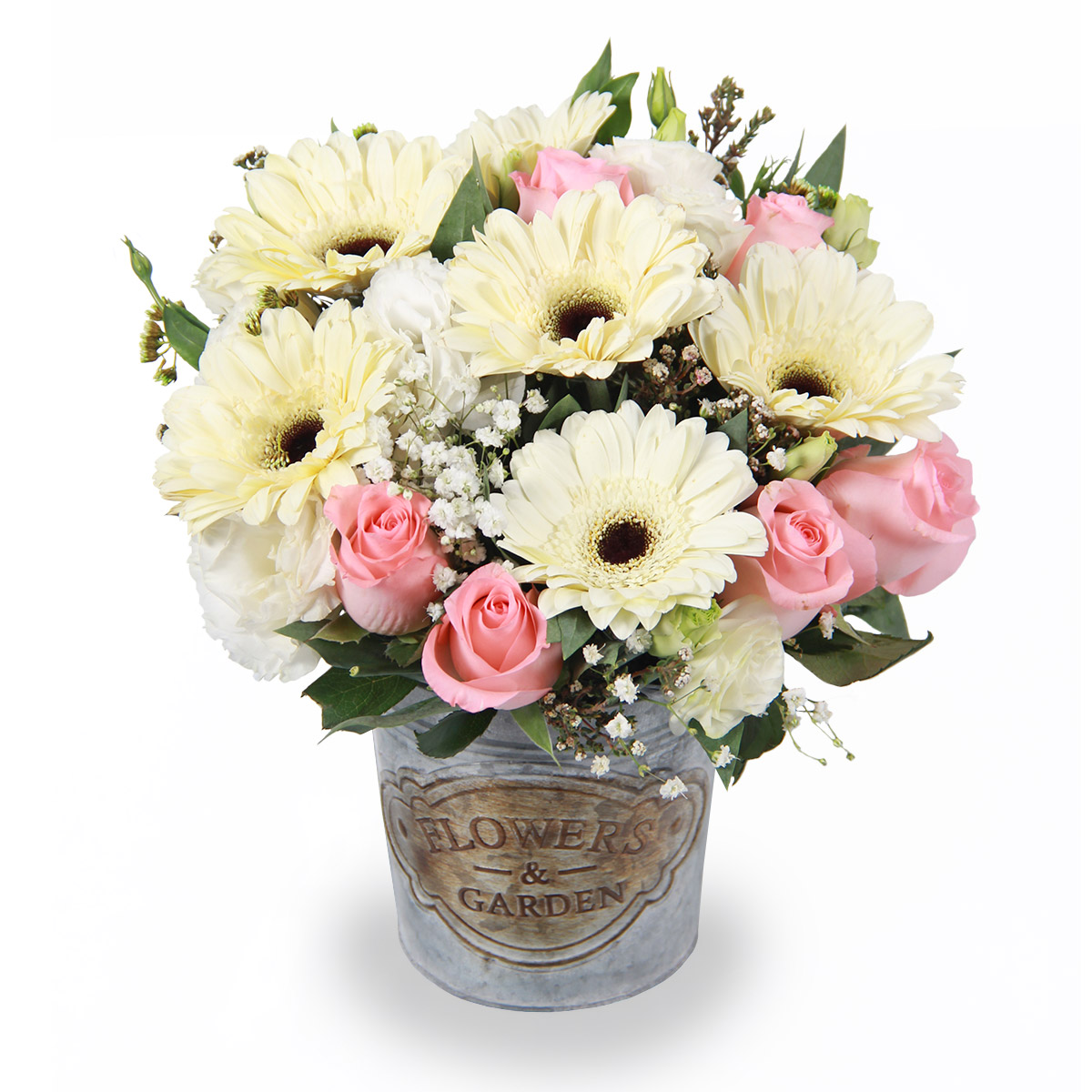 AR1713 joyful inspiration white gerbera