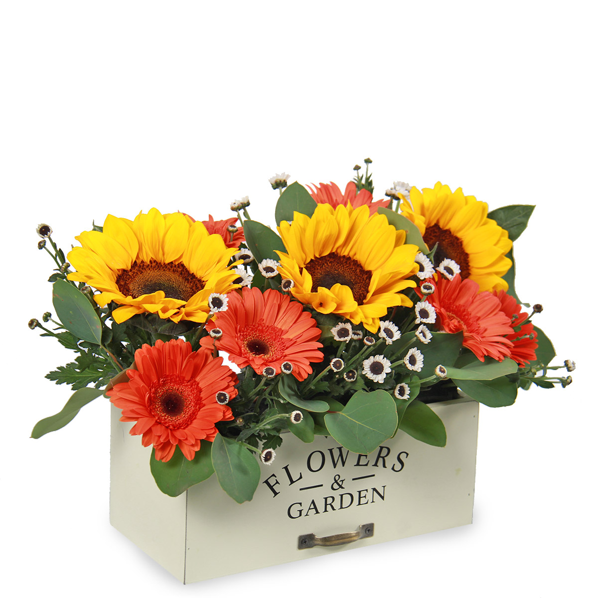 AR1721 summery sunburst sunflowers gerberas
