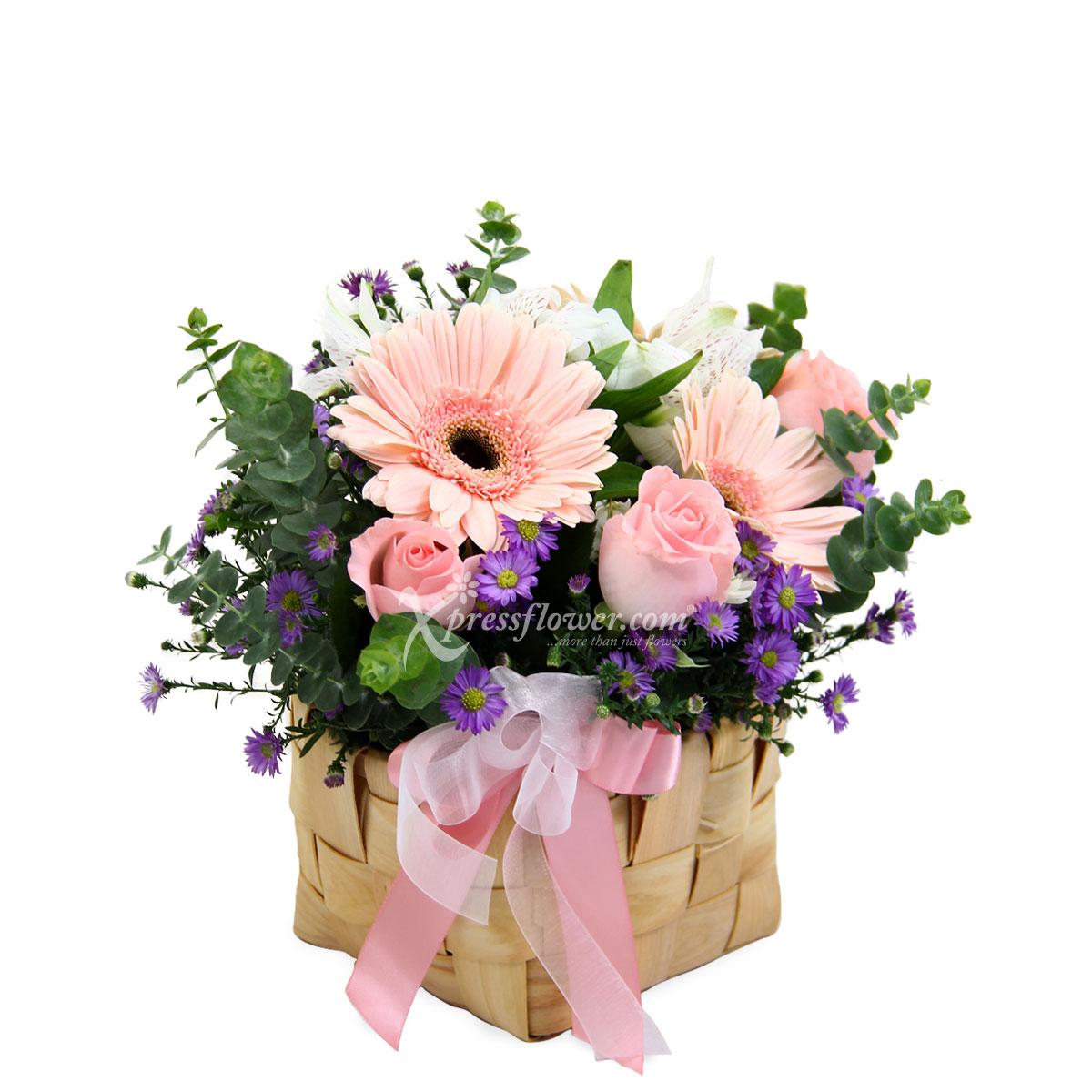 AR2028 Mirthful Blooms
