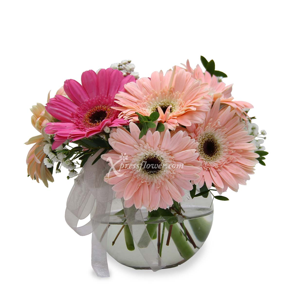 Summer Love (4 Pink and 4 Purple Gerberas)
