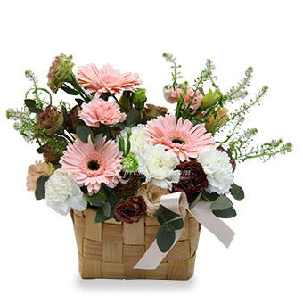 Delightful Smiles (3 Gerberas and 6 Carnations)
