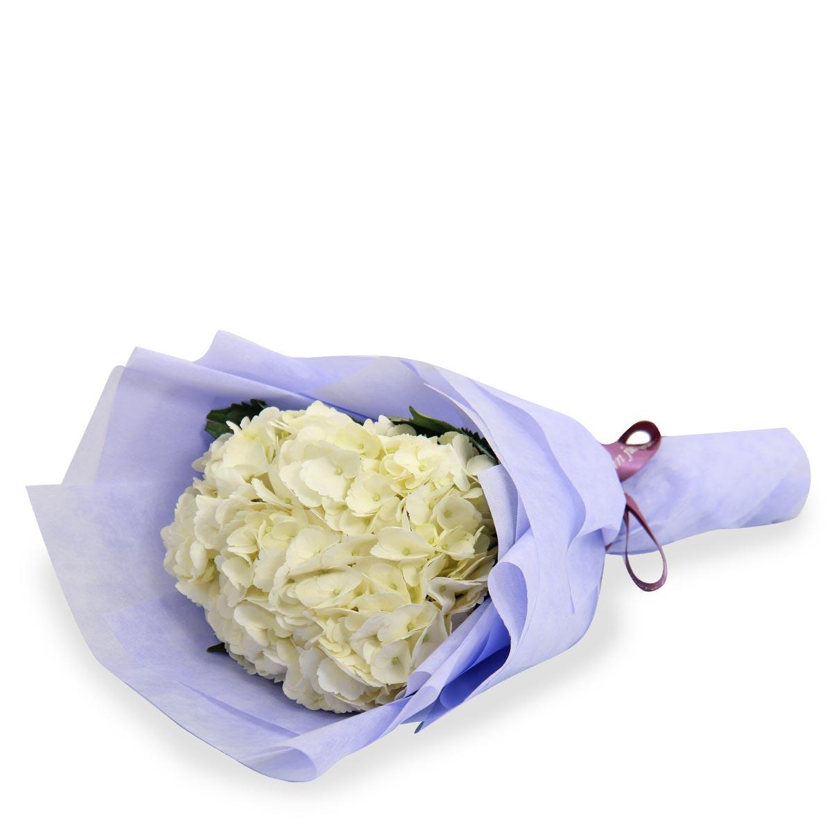 VP1702 pure posy white hydrangea