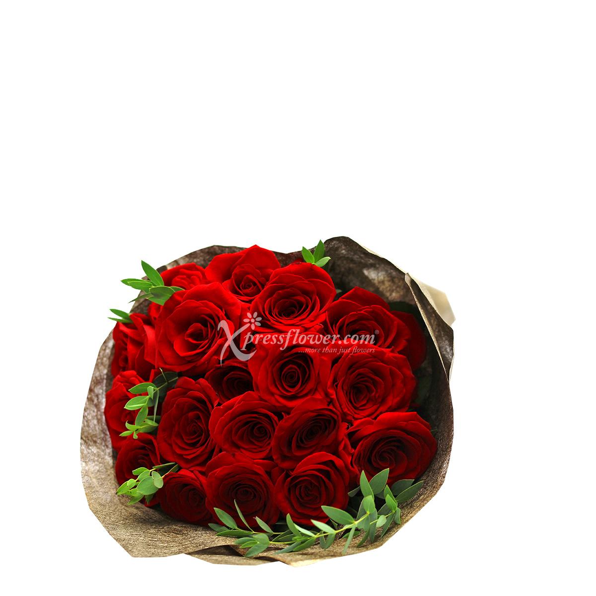 VP1902 Crimson Heart