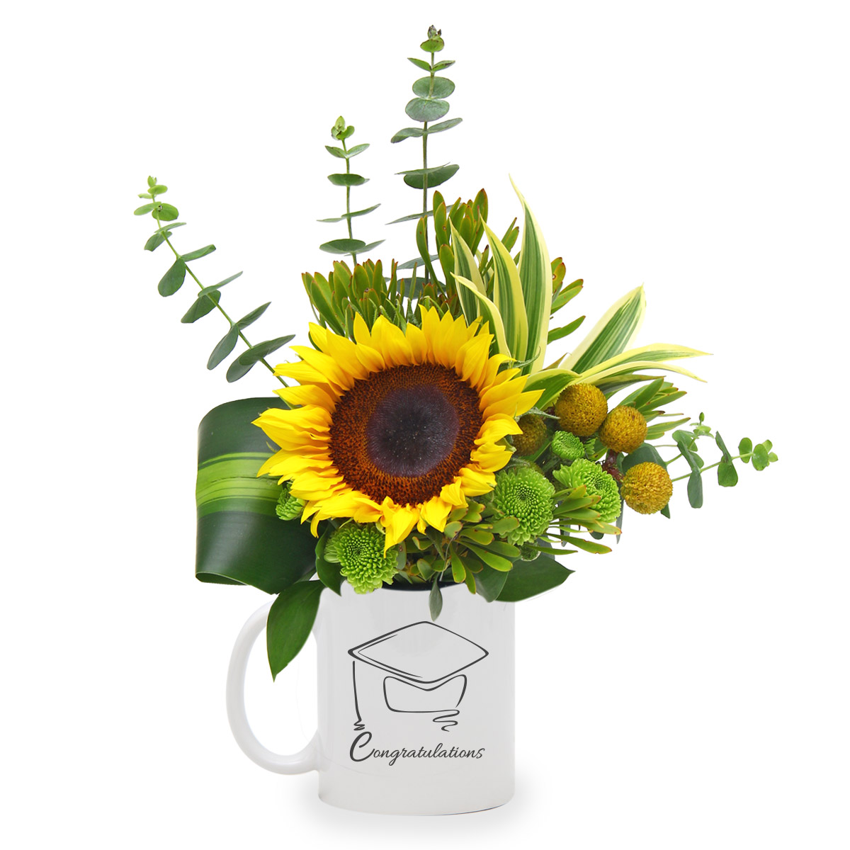 CT1603 Moving Up Sunflower mug balloon Arr