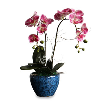 Flawless Grace (Artificial Orchid)