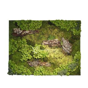 Sea of Green (Dried Moss)