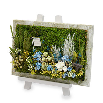 Garden of Dreams (Moss art with preserved flowers)