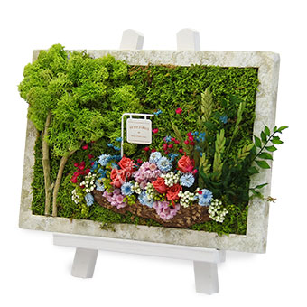 Petit Jardin (Moss art with preserved flowers)