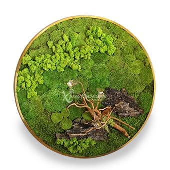 Eternal Lush (Moss Art)